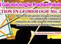 """METZ-Formation Geobiologie : DETECTION NIV.2 Les Réseaux"""" Découverte initiation. Dim. 05 Fevrier 2017  Les grands Réseaux d'énergies géomantiques, Telluriques et Cosmiques..."""