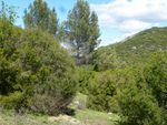 Le vallon de Ponserot, dernier vallon sauvage de Rognes (1) / Balade en Provence