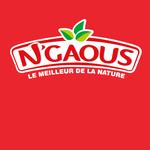 Mon nouveau partenaire, N'GAOUS, enfin disponible en France