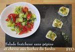 Salade fraîcheur sans pépins, et son chèvre aux herbes du Jardin.