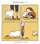 Le chat, un rébus...