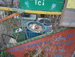 Petite promenade dans la Dhuys en ce 31 décembre