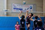 As volley semaine du 16 au 20 janvier 2017