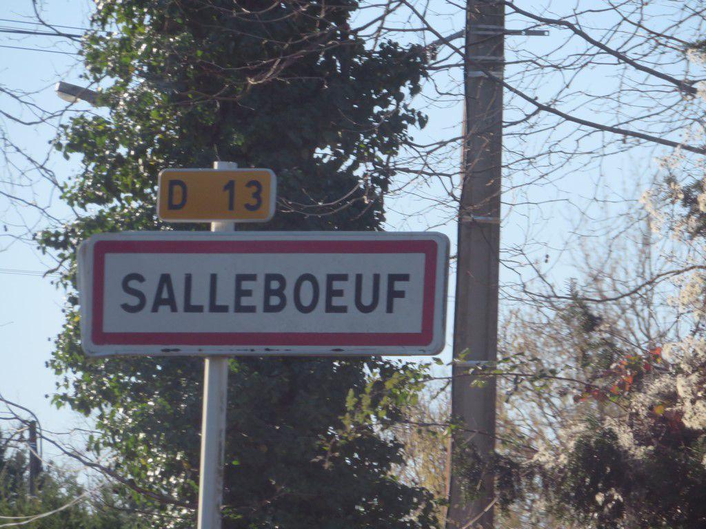 rando salleboeuf 11 km