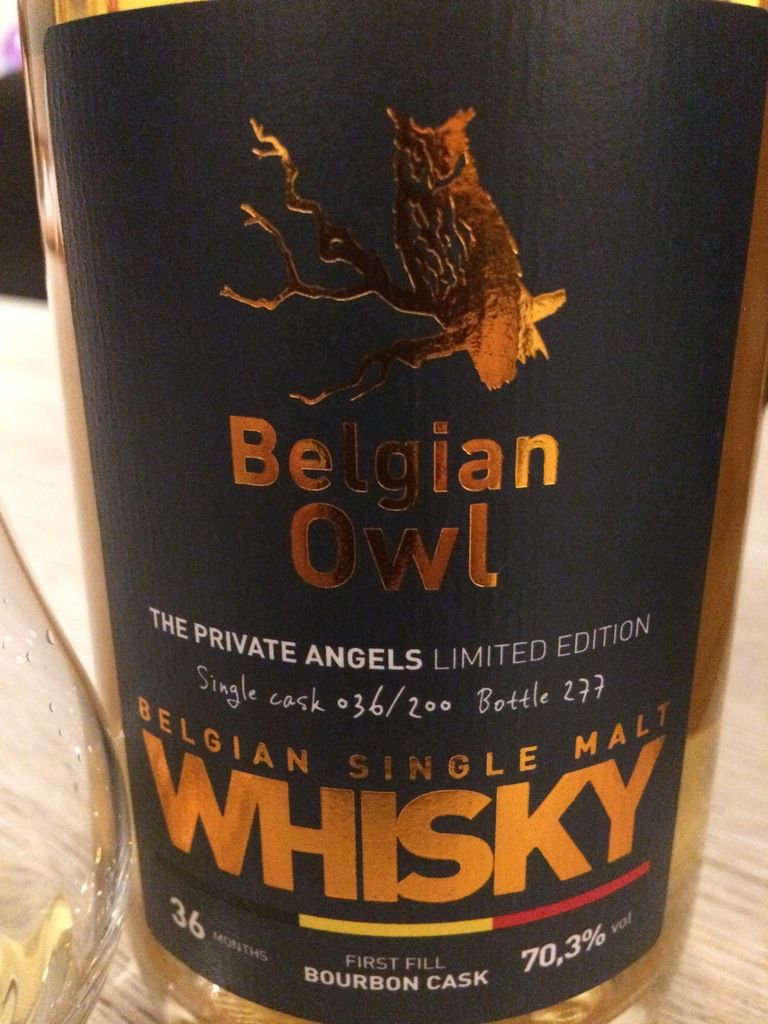 Belgian Owl 'The Private Angels'