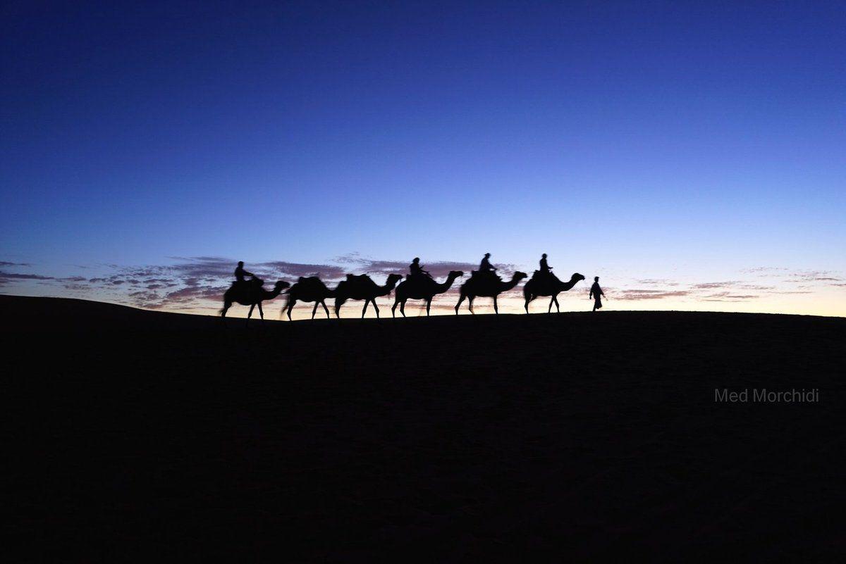"""Maroc - Rabat.  Les Nuits Photographiques La 8éme Edition Appel à Participation  Les """"Nuits Photographiques"""", un événement crée par l'Association Atelier d'Art Photographique pour la découverte de différents regards et créations photographiques des photographes et vidéastes de tout horizon, et c'est une occasion annuelle qui vise en outre le rapprochement du grand public à l'action culturelle phot"""