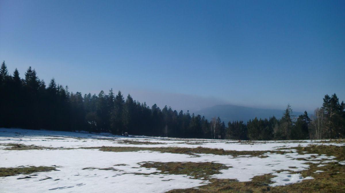 Le Pré du Hengst, où mon partenaire de randonnée du jour aurait bien pris un bain de soleil.