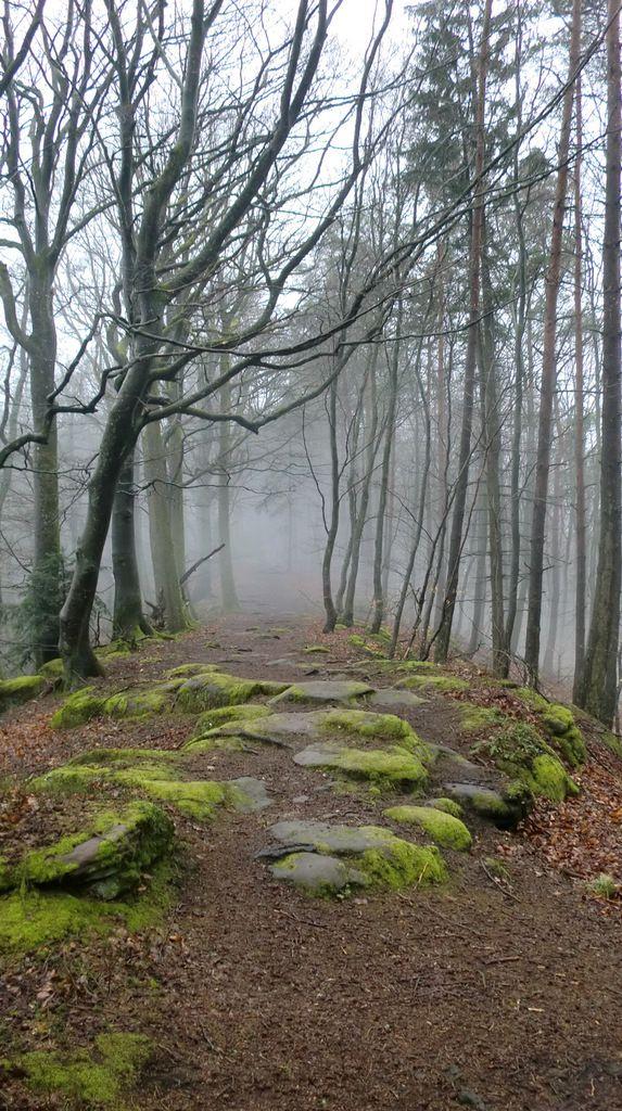 Les deux extrémités de la crête communiquent entre elles par cette voie naturelle d'à peine 3 mètres de large. La brume donne un air mystique à cet endroit.