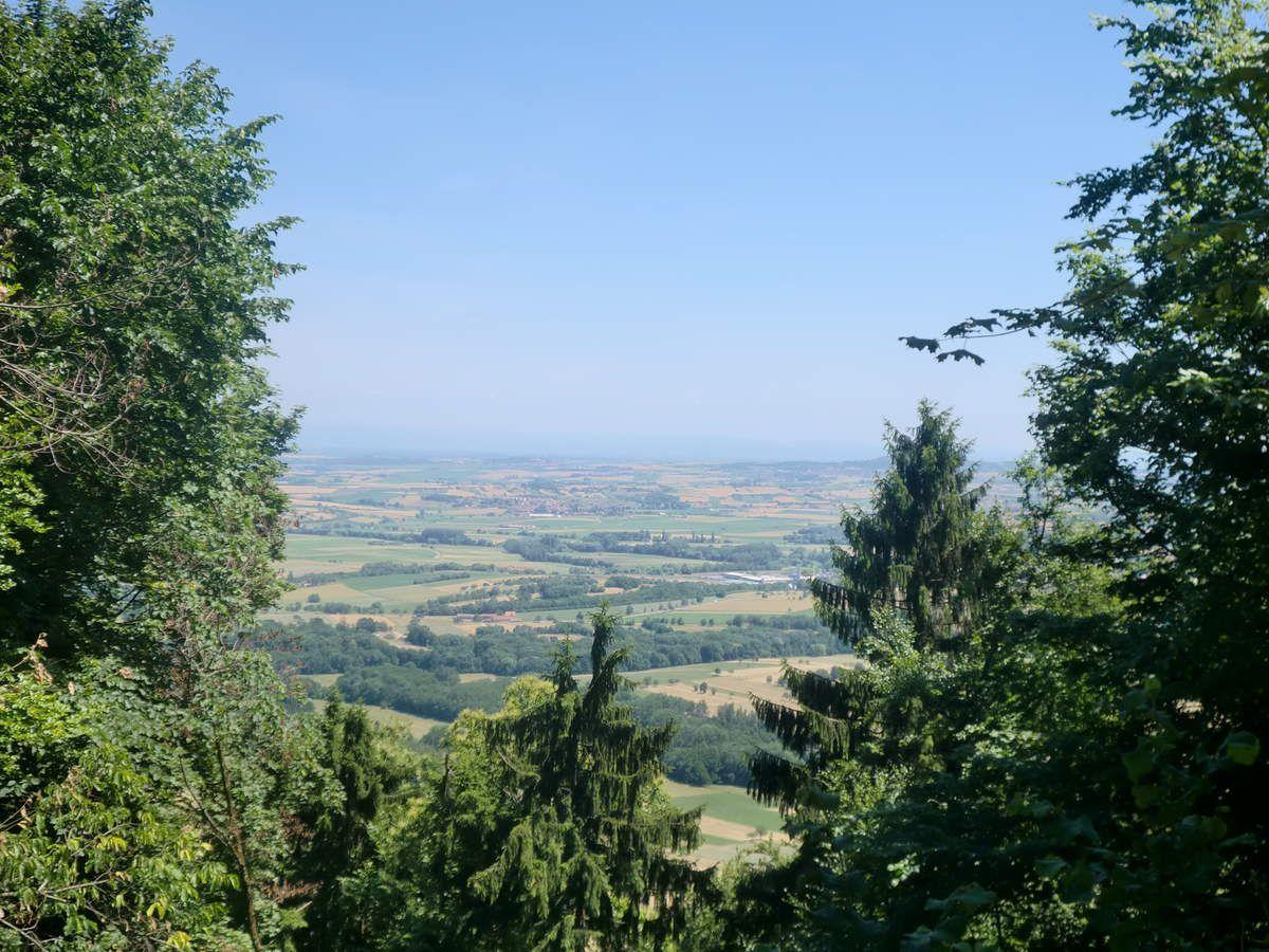 Superbe vue sur la plaine d'Alsace depuis les remparts du château du Grand Geroldseck.