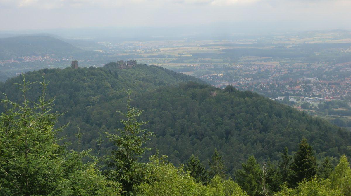 Une grande classique parmi les randonnées dans la région de Saverne.  Les trois châteaux vus depuis la Tour du Brotsch.