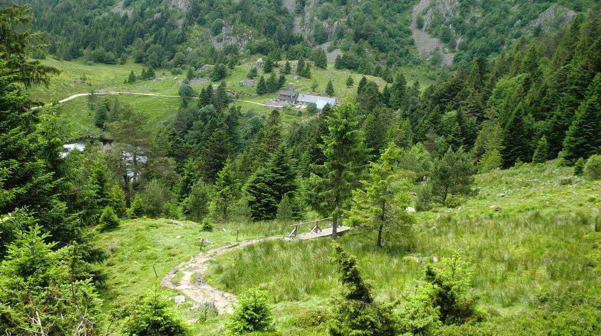 La fameuse passerelle qui figure dans toutes les revues de randonnées des Vosges.