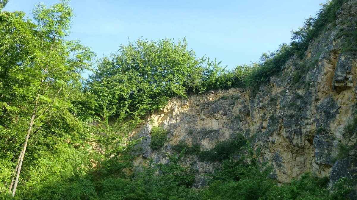 Les carrières de calcaire sont nombreuses dans le secteur. D'ailleurs non loin de là, vers Soultz les Bains, se trouve encore une usine à chaux en activité.