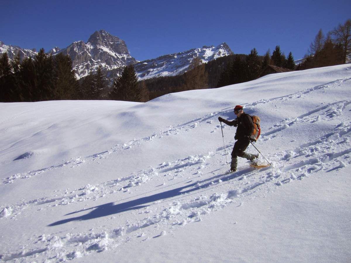 Week-end raquettes Cairns - Gros Châtillon (1836 m) - Alpes Suisses - Dimanche 16 mars 2014