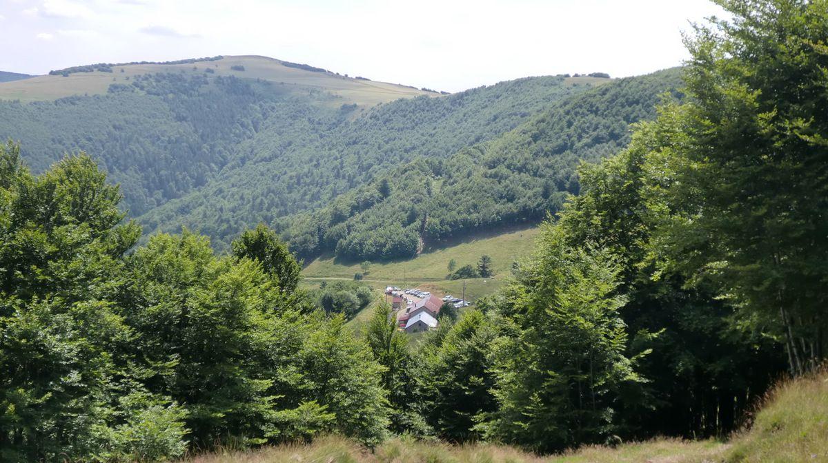 avec en point de mire le Steinwasen et sa ferme auberge...