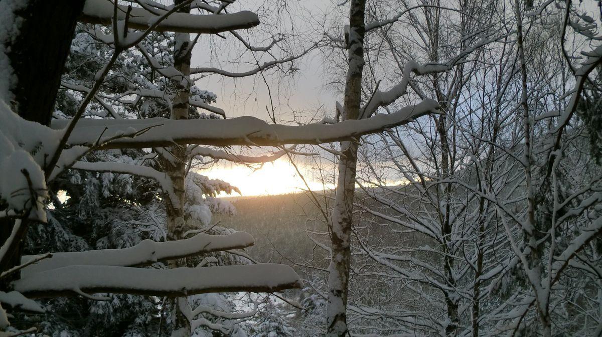 Au dessus des crêtes le soleil se lève et nous offre un beau spectacle.
