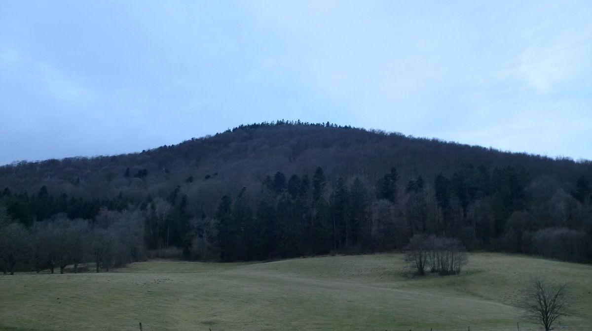 Au départ de Gensbourg. Un coup d'oeil sur le Wildberg.