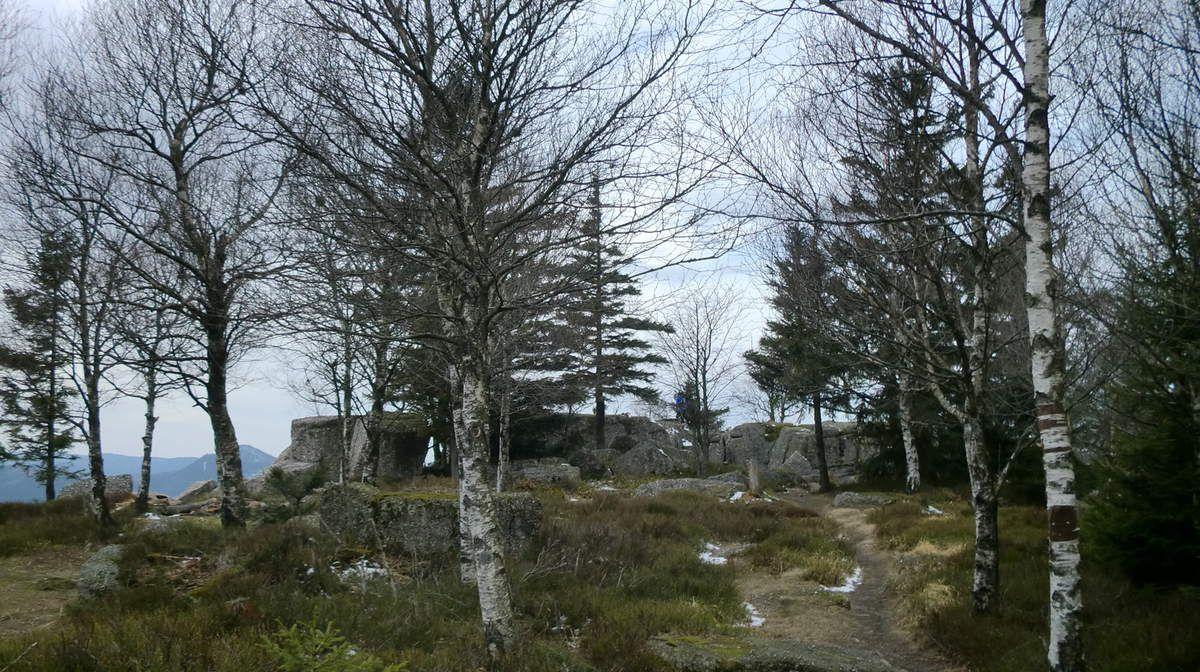 Et nous voilà sur le plateau sommital du Rocher de Mutzig.