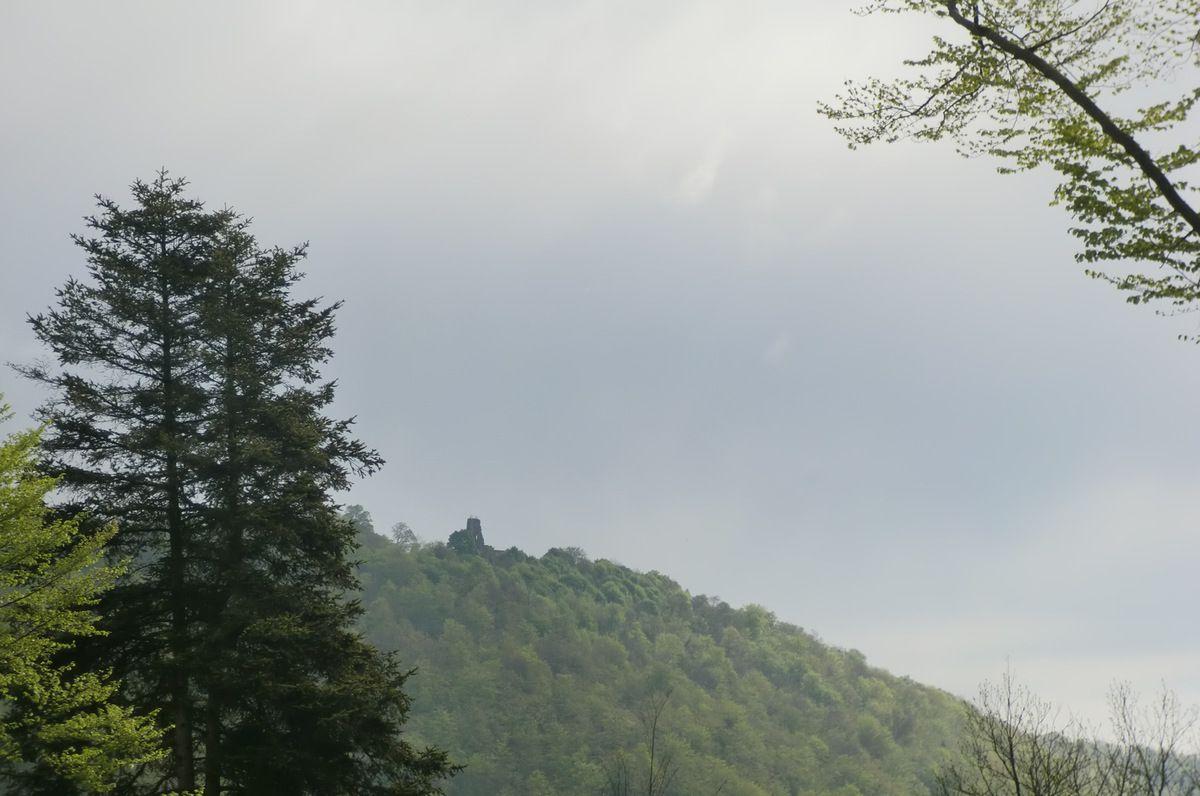 Nouvelle vue sur le Guirbaden, l'un des plus grands château fort d'Alsace.