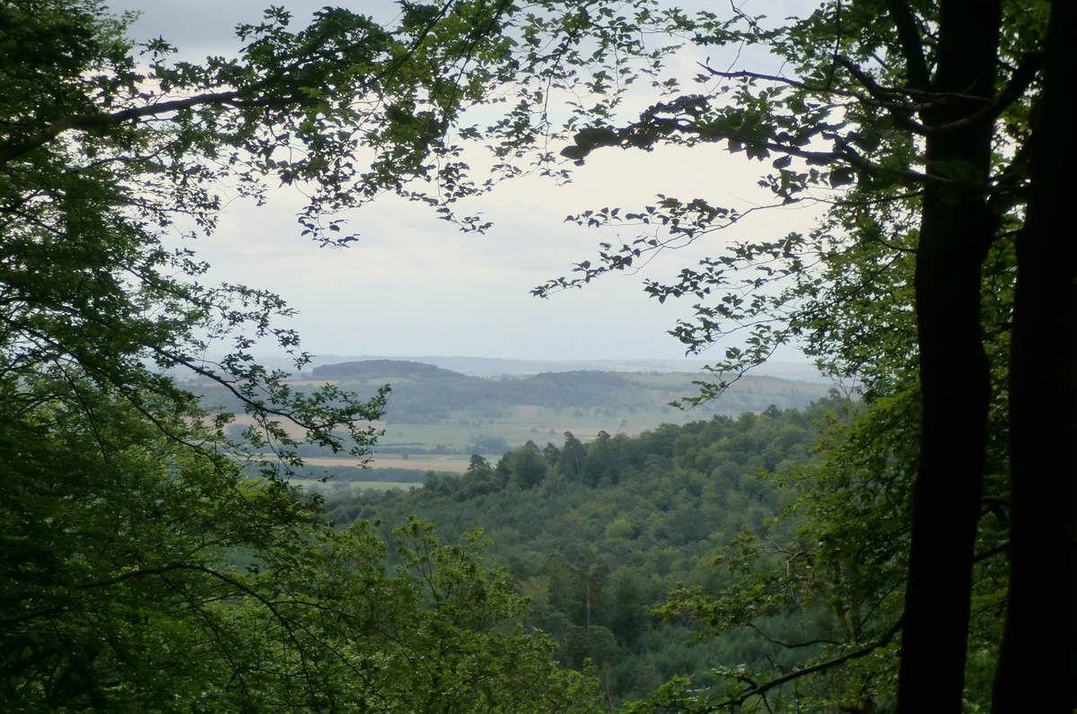 A travers cette belle lucarne, on distingue le Galgenberg et à sa droite le Bastberg.