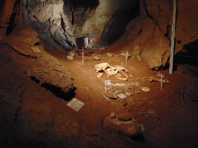 Vestiges archéologiques en fin de visite.