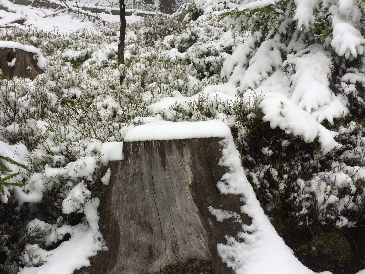 Une idée de l'épaisseur de la couche de neige