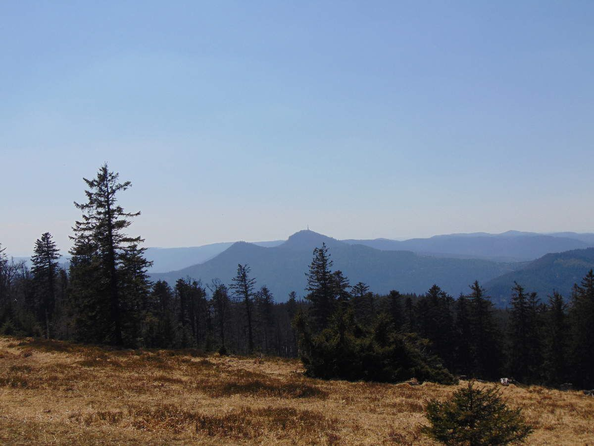 Avril - Tour du Grossmann - Vosges