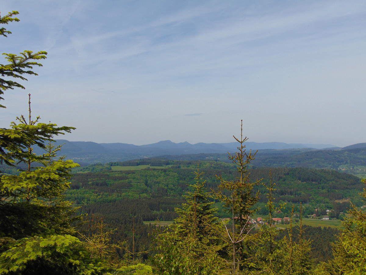 Nous distinguons tous les massifs du Donon jusqu'à l'Umwurf, en passant par celui du Rocher de Mutzig.