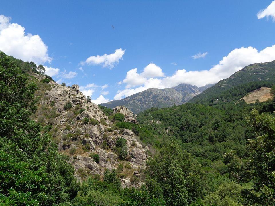 Les Gorges de la Richjusa et Cascade du Voile de la Mariée - Corse du Sud - Bocognano - 17/07/2018