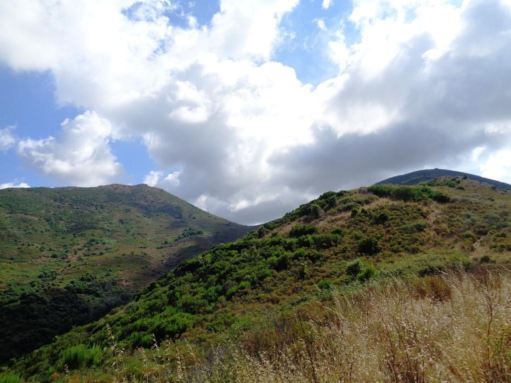 Vue sur la Bocca a Foce (664m) et la Punta Curbajola (794m)