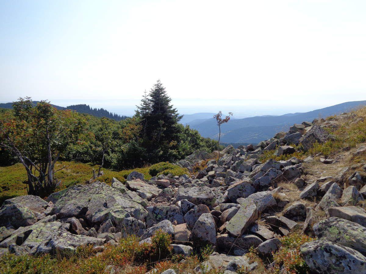 Superbe sommet, avec cet immense amas rocheux.