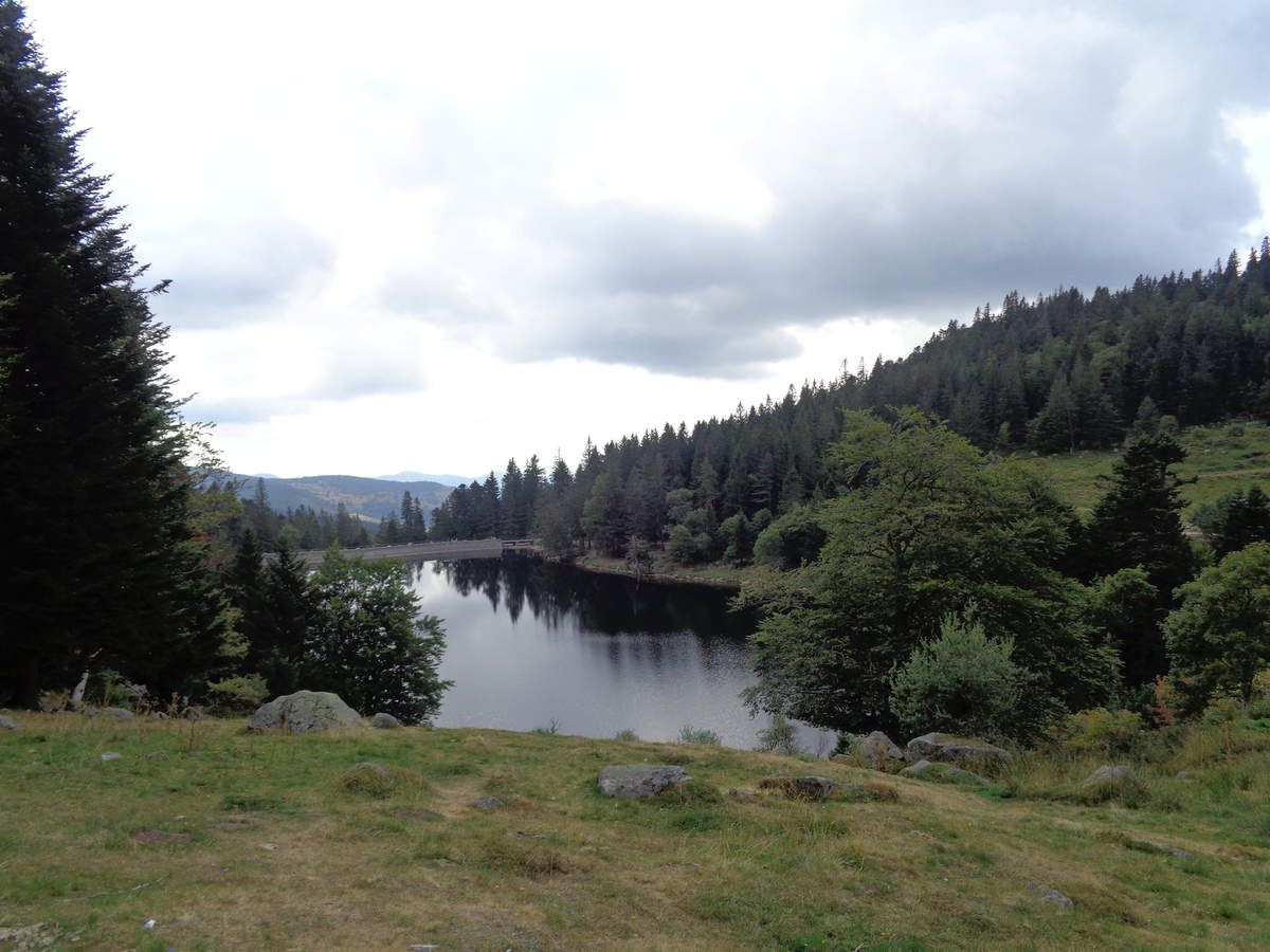 Perché à 1065 mètres d'altitude, le lac du Forlet est le plus haut des Vosges.