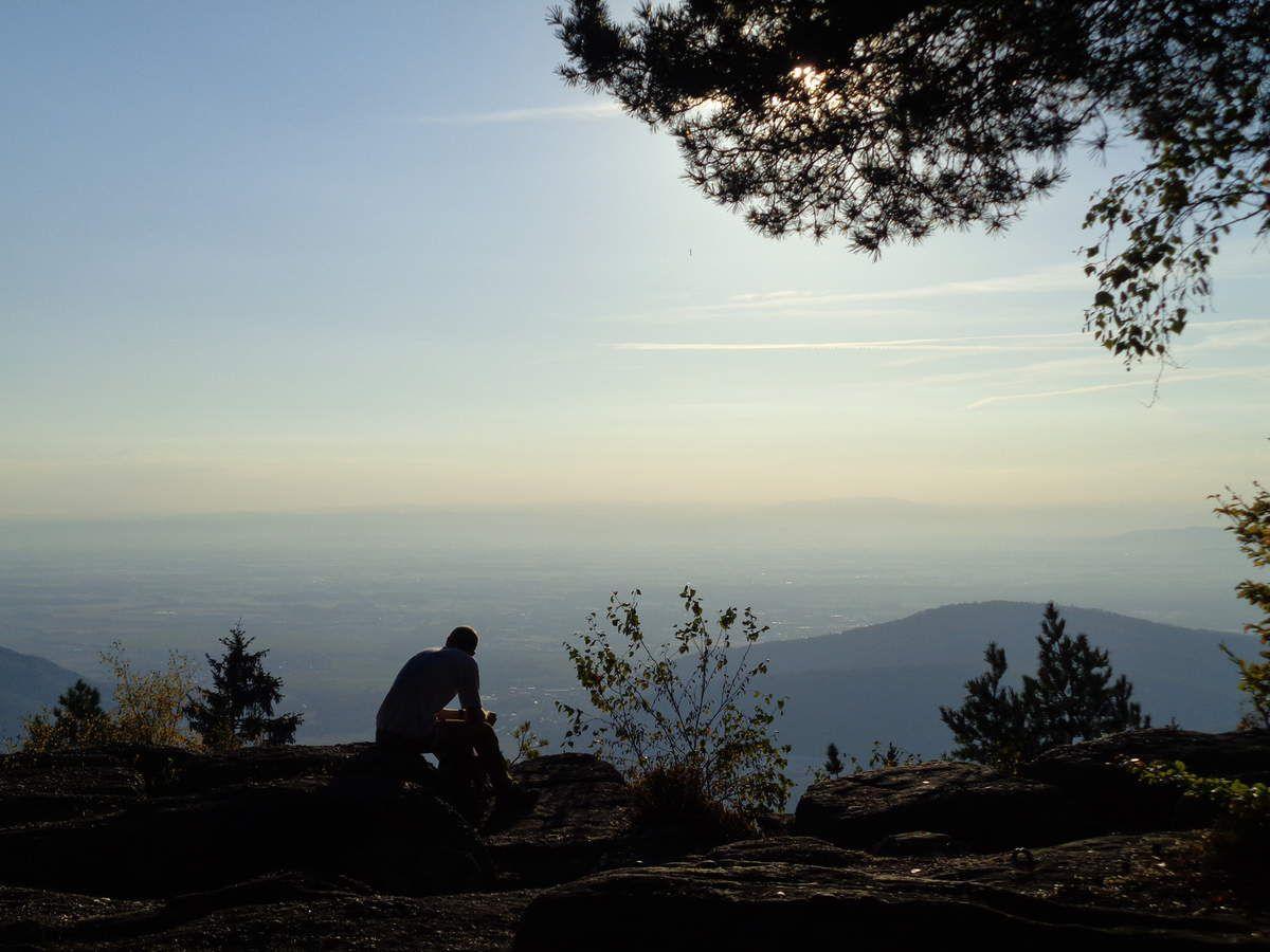 Le Rocher du Coucou, un promontoire offrant une splendide vue sur la Plaine d'Alsace, le tout dans une luminosité absolument remarquable.