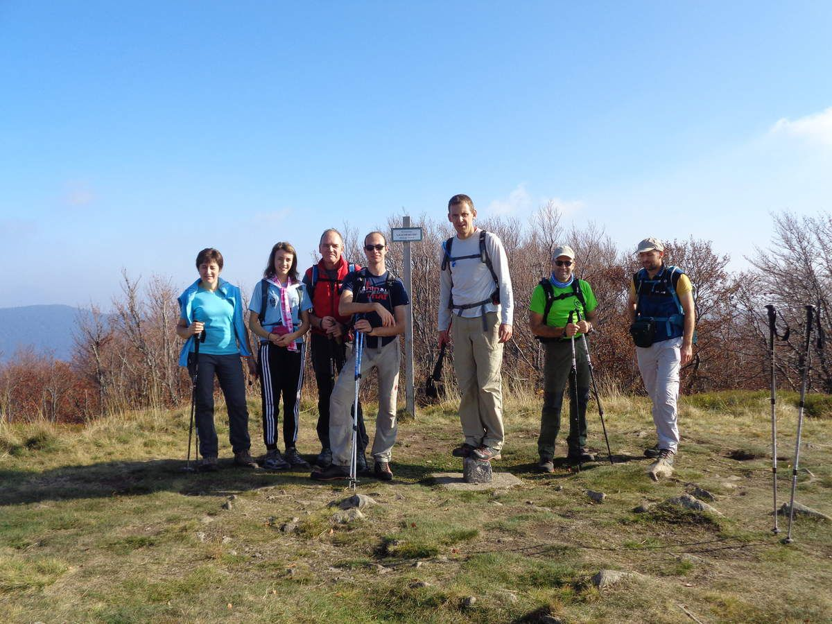 Sommet du Lauchenkopf (1314m)