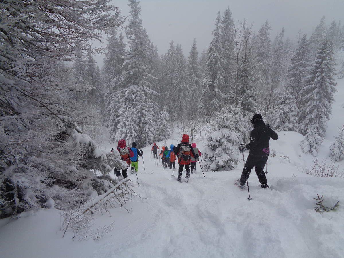 A partir de Pierre à Coutiau (1600m), nous entamons le retour au refuge par un tracé inédit.