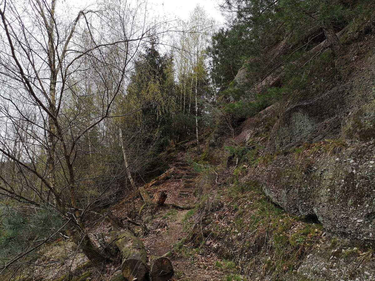 Les Rochers Insolites du Pfannenfels et du Schoenfels - 07/04/2019