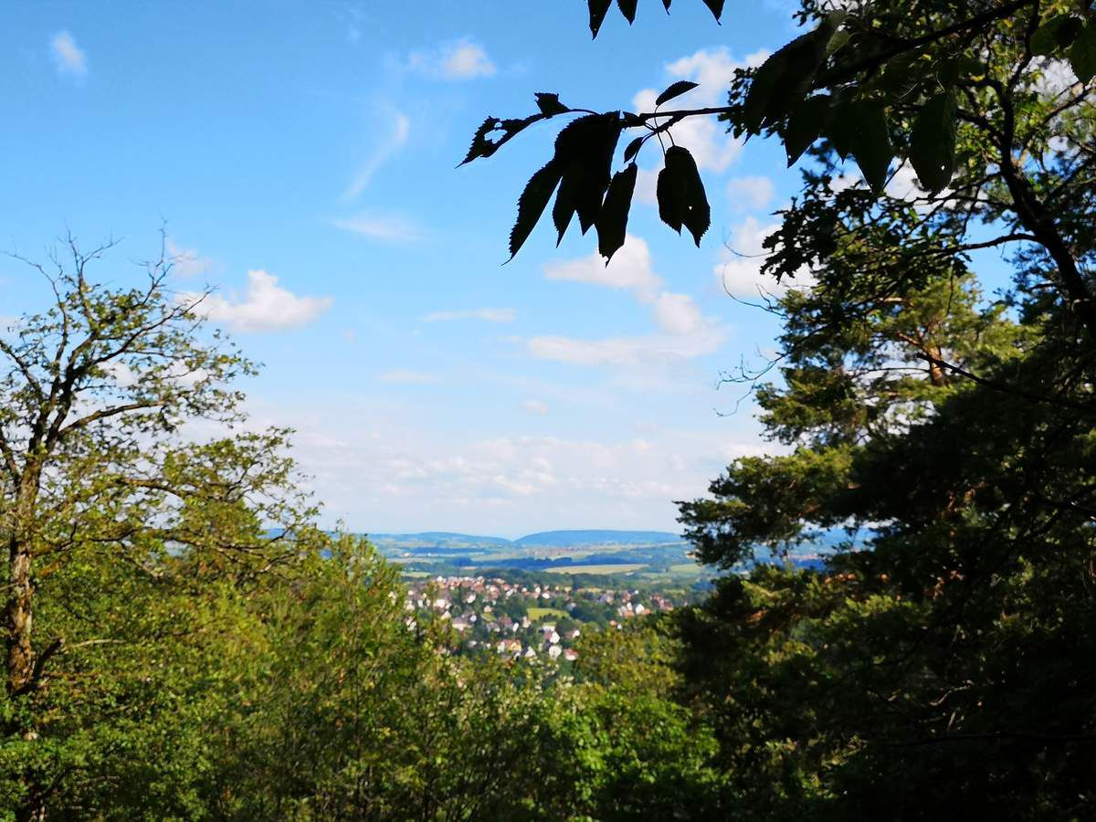 Du haut du premier rocher, la vue s'étend magnifiquement vers le Kronthal, autre site d'escalade de la région.