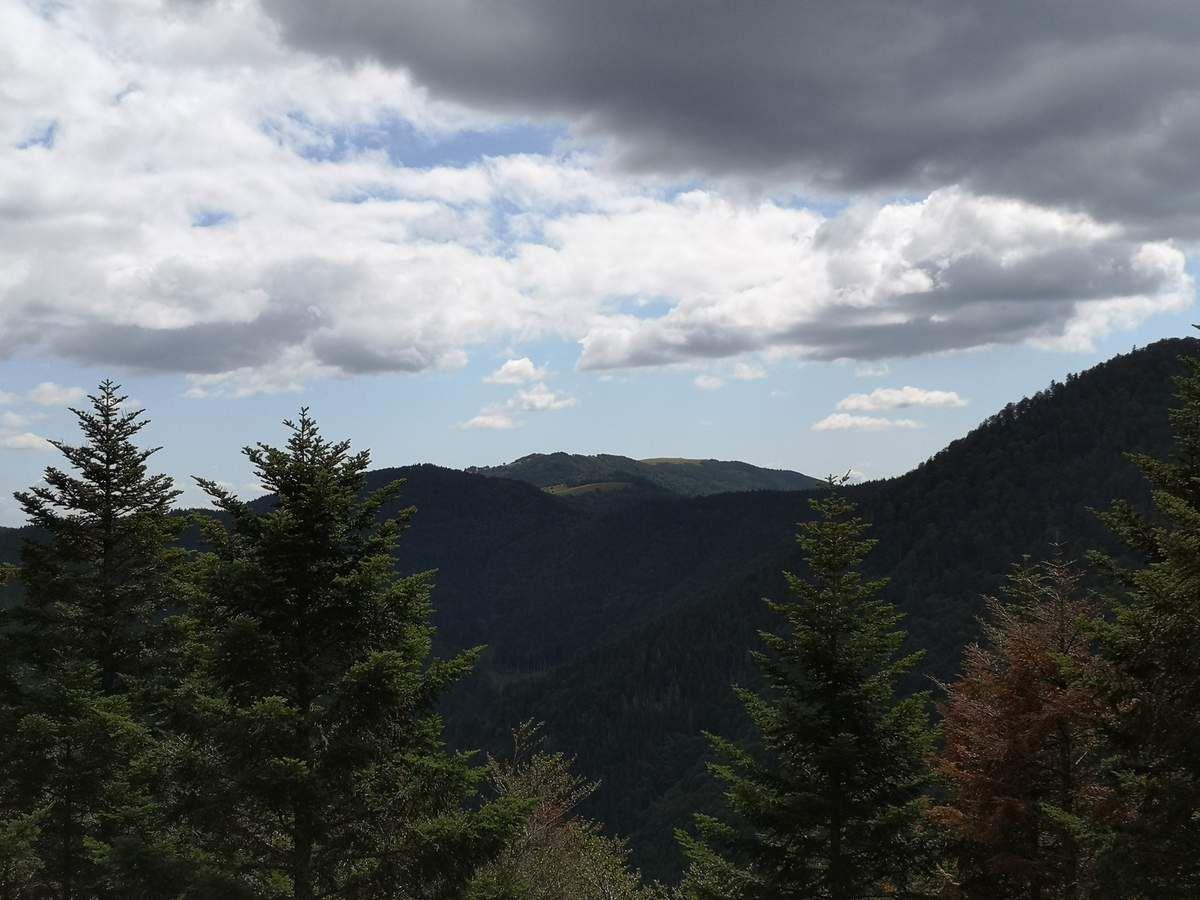 Au loin, nous distinguons les sommets du Vogelstein (1181m) et du Rossberg (1191m).