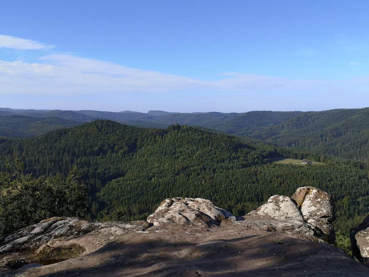 Depuis la plateforme du Rocher des Corbeaux, les deux sommets du Hochkopf (475m et 503m)