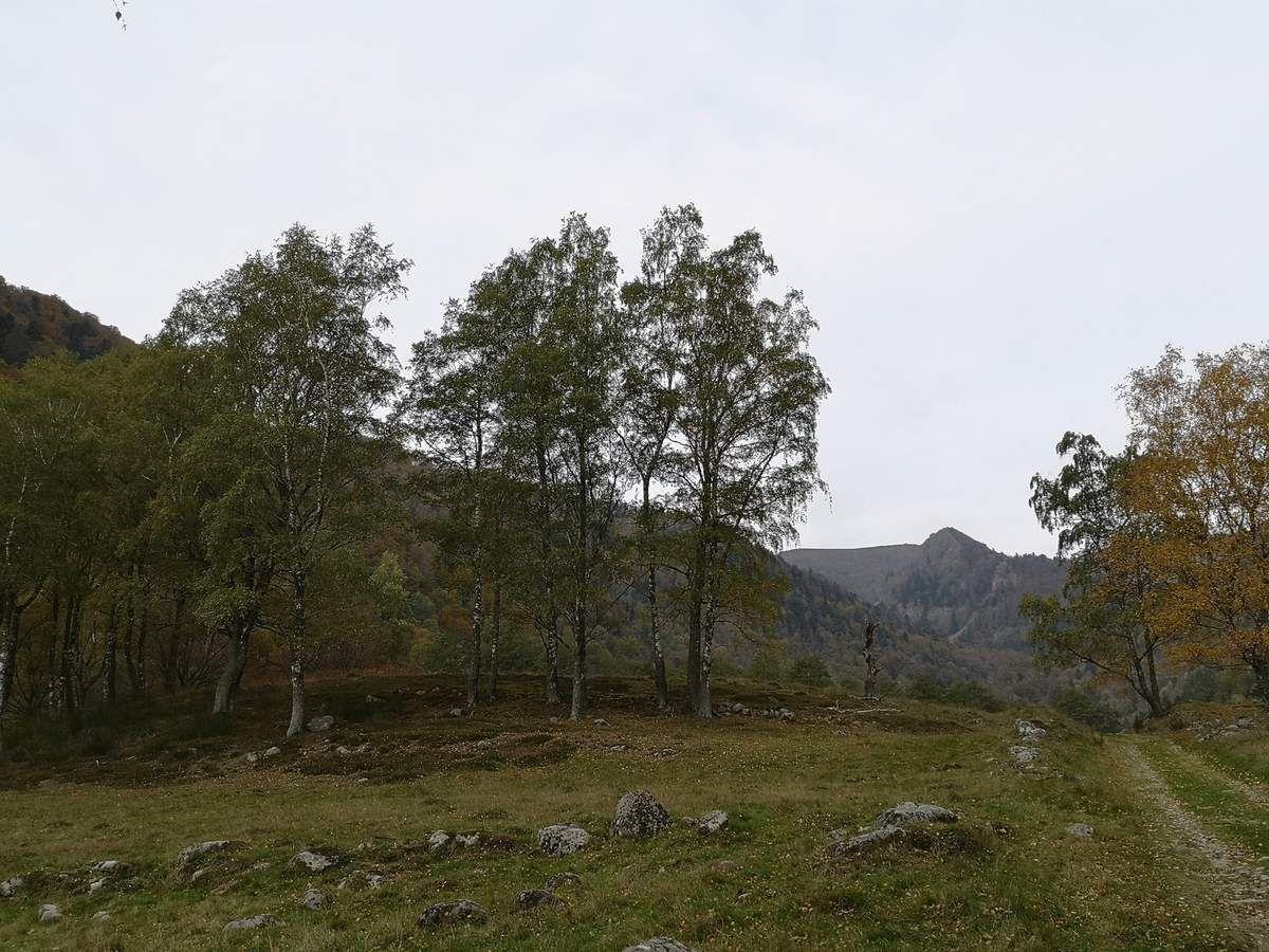 Comme une barrière en travers de la vallée, l'ancienne moraine frontale, nous rappelle la présence du glacier de l'Ammelthal lors de la dernière période glaciation (Würm).