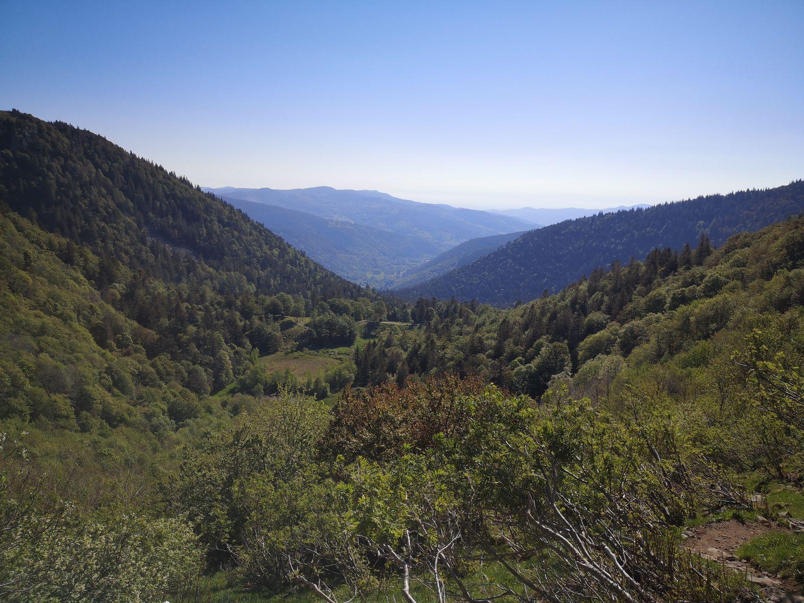 A mi hauteur, derrière moi, la Petite Vallée s'ouvre à mes yeux. Ca grimpe, ça grimpe toujours et ça s'essouffle. Les deux mois de confinement auront laissé des traces.