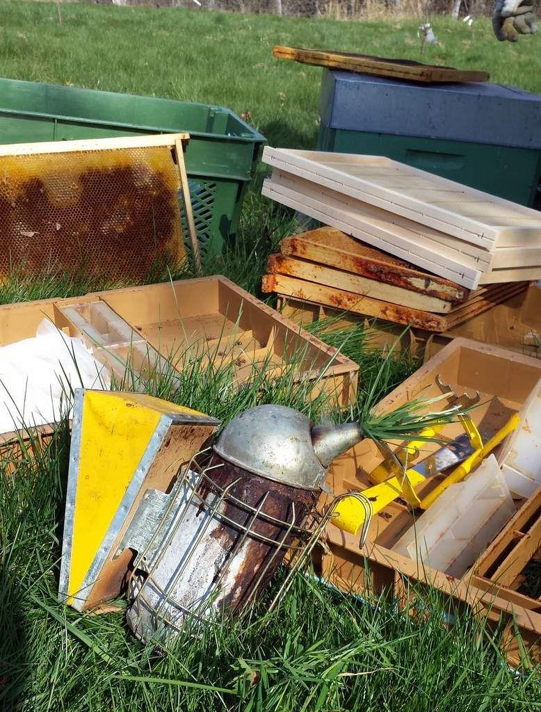 Visite de printemps au rucher N°1