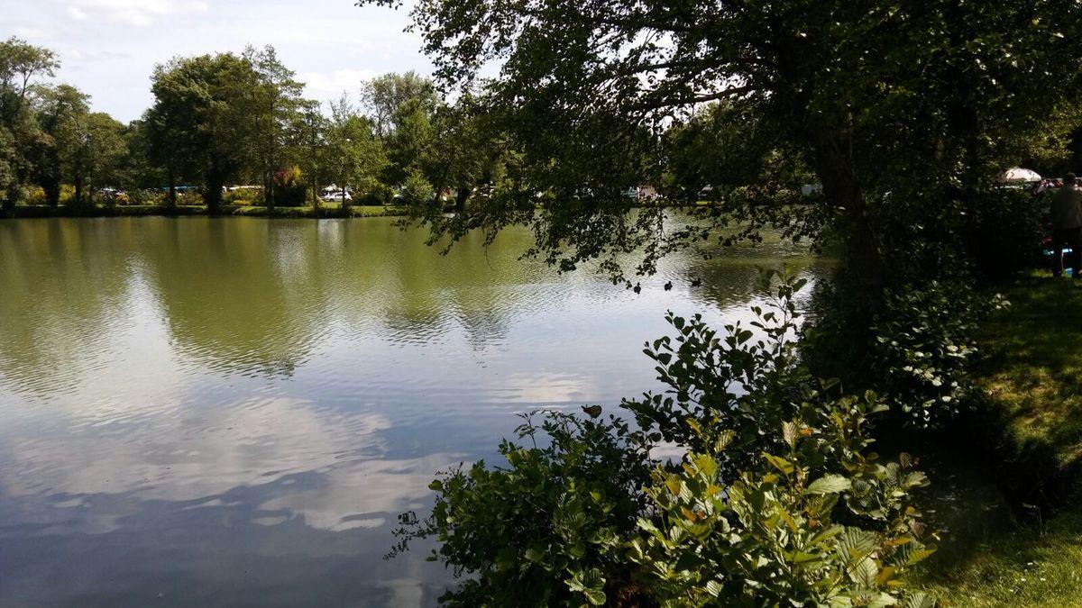 Promenade dans une brocante les petites histoires de paul for Brocante dans 02