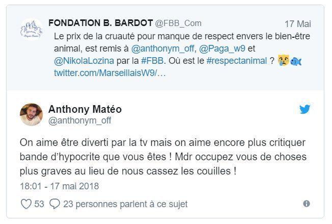 """La fondation Brigitte Bardot en guerre contre Les Marseillais de W9 qui se sont adonnés """"à un jeu macabre"""""""