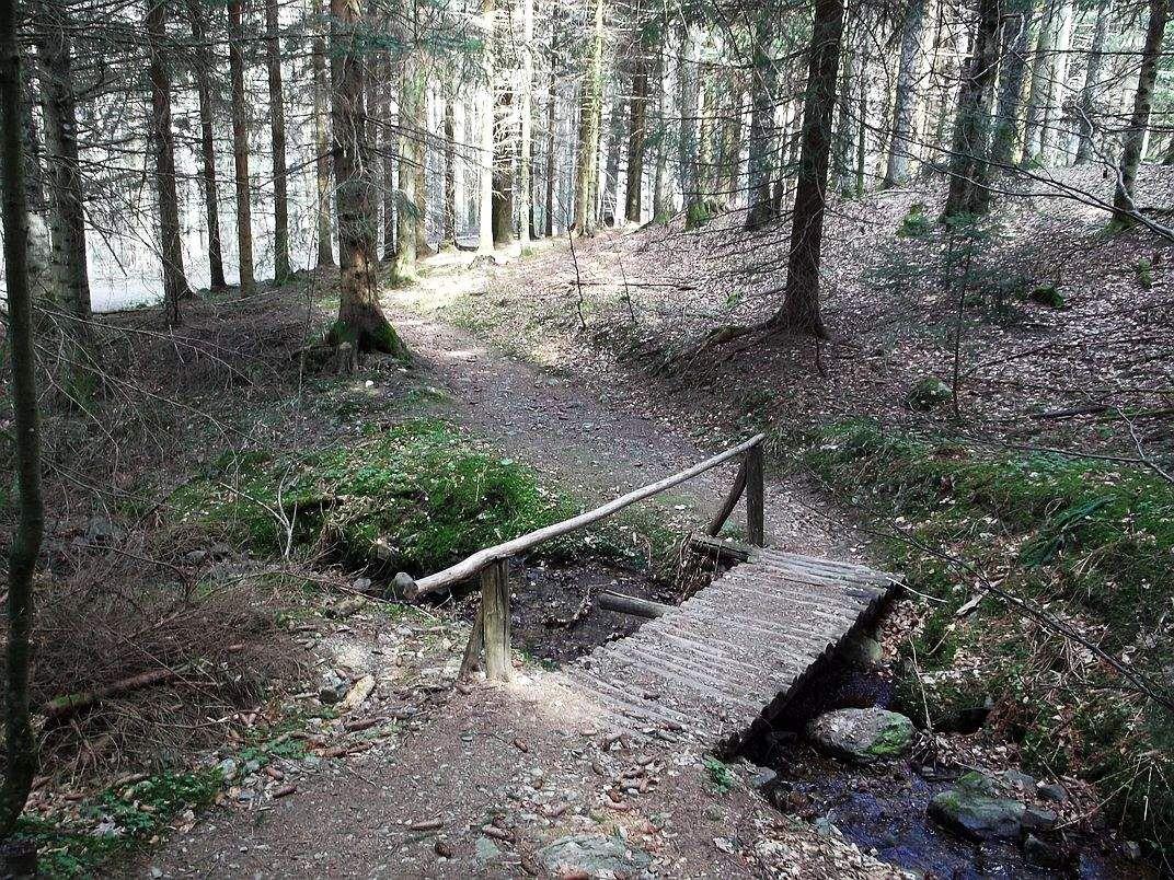 Le petit pont de bois qui termine la première partie de la descente.