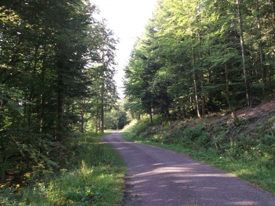 Il y a peu de circulation sur cette route, et on marchera tranquillement sur le bord gauche.