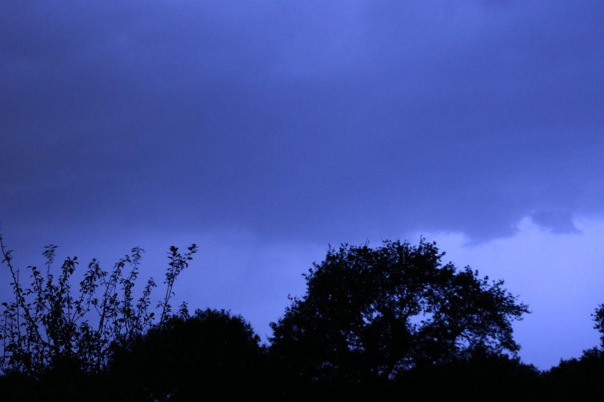 Finalement l'orage s'est éloigné, et la pluie a fini par tomber! 25 mm!