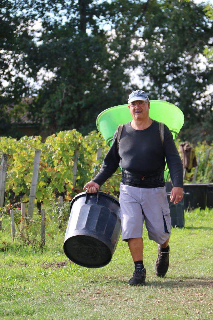 Sortie scolaire au pays du vin...