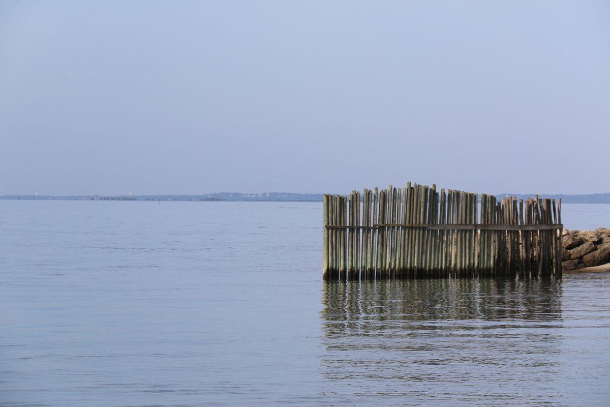 Journée bateau sur le bassin d'Arcachon