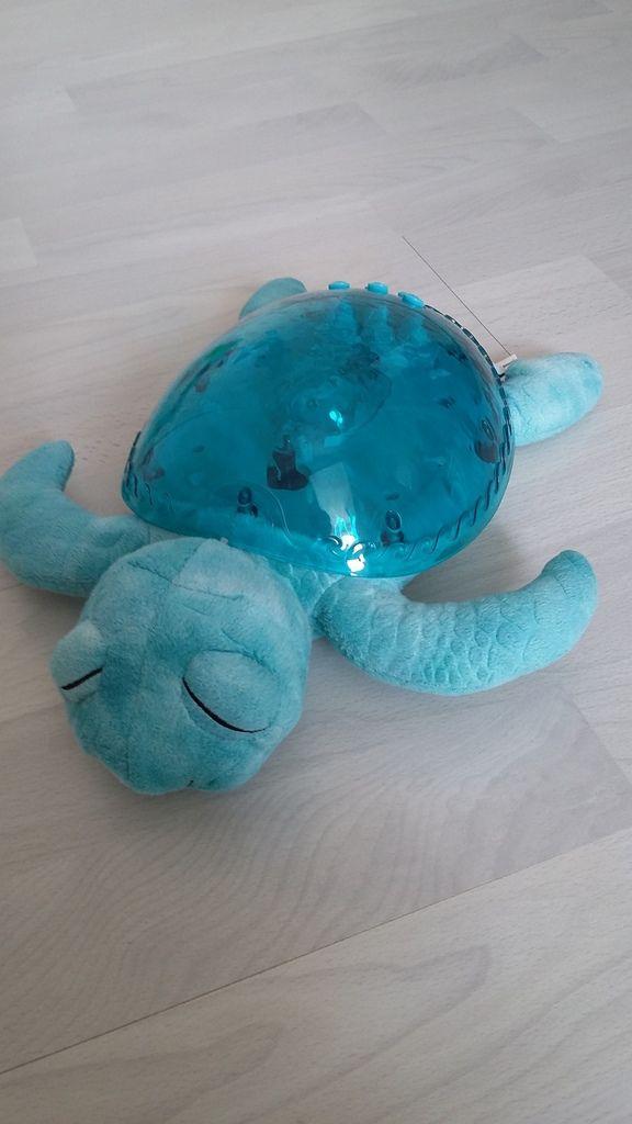 Notre tortue bleu de Cloud-b