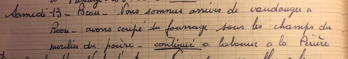 Samedi 13 octobre 1956 - fourrage et vigne